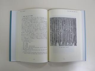 佛教文獻と文學 日臺共同ワークショップの記録 2007