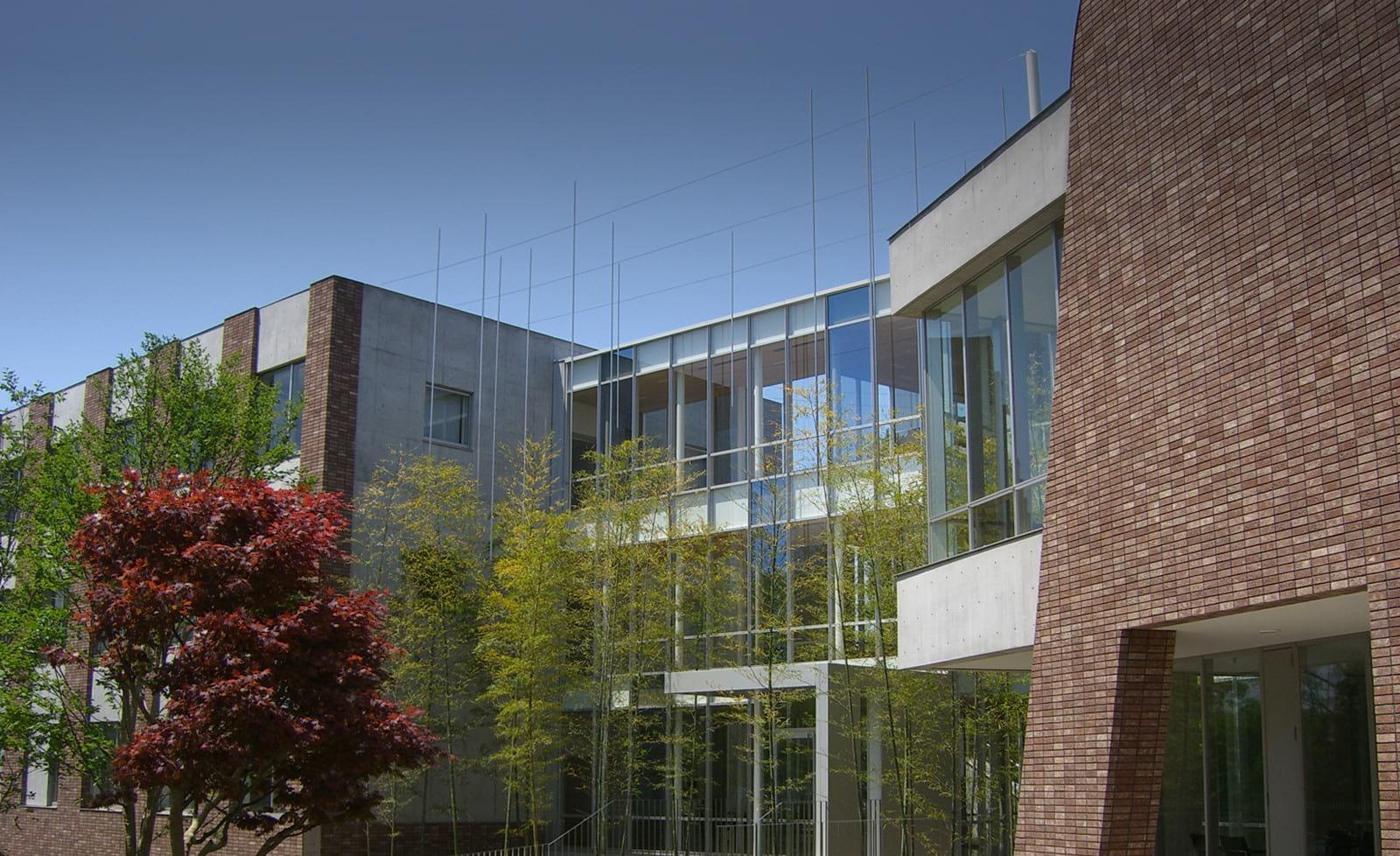 国際仏教学大学院大学